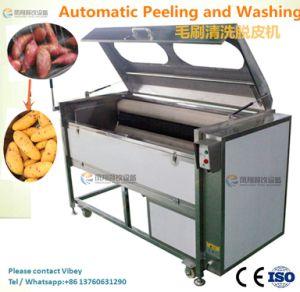 Attrition Roots Vegetable Fish Washing Peeling Machine / Fruit Wahser & Peeler (MSTP-1000) pictures & photos
