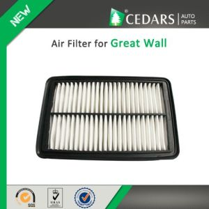China Auto Parts Quality Supplier Air Filter for Great Wall pictures & photos