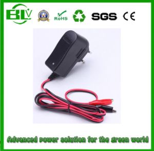 Manufacturer Price of Smart AC/DC Adapter for Battery About 8.4V1a Battery Charger pictures & photos