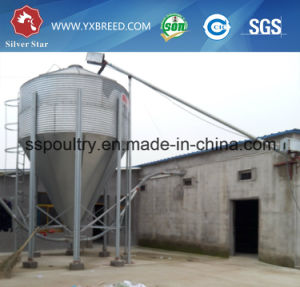 H Type Automatic Broiler Chicken Cage Poultry Farm Equipment pictures & photos