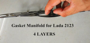 Gasket Manifold for Lada 2123 pictures & photos