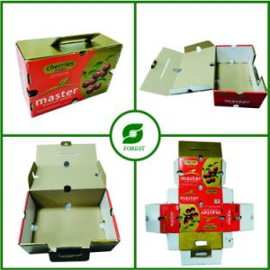 Full Printed Cardboard Carton with Handle pictures & photos