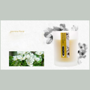 Botanic Garden Luxury Scented Candle pictures & photos