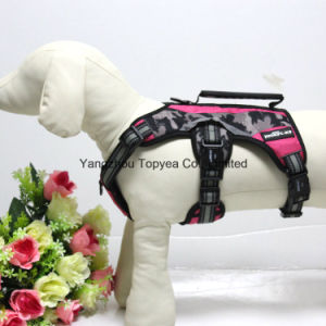 Pet Clothes (YD008-16) pictures & photos