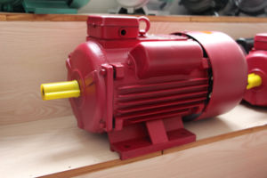 YL Series single phase motor pictures & photos