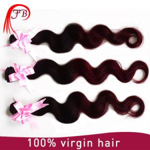 Ombre Color 1b 99j Hair Bundles Fou Black Woman pictures & photos