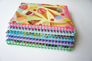 Cheap Wholesale Stationery Custom Student Exercise Book School Paper Notebook pictures & photos