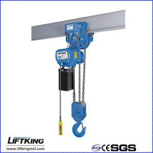 Ce SGS Certificated Electric Chain Hoist for Crane pictures & photos