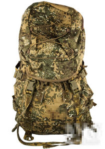 Classical Military Tactical Hiking Sports Travel Camping Backpack Handbag pictures & photos