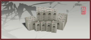 2V1000ah AGM Battery for Renewable Energy System pictures & photos