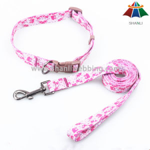 Hot-Sale High-Quality Printed 15mm Polyester/Nylon Leash & Adjustable Collar pictures & photos