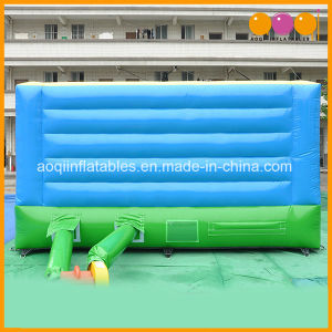 Animal Bouncer Inflatable Pig Amusement Jumping Bouncer (AQ02375) pictures & photos