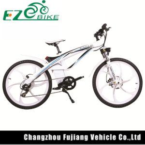 Light Weight High Power Electric Bike Tde01 pictures & photos