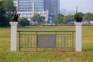 High-Quality Decorative Galvanized Steel Aluminium Alloy Balcony Railing 4 pictures & photos