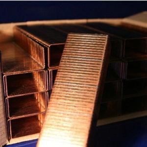 (EI22CC) Carton Close Staple for Packaging pictures & photos