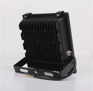 30W IP67 LED Floodlight, AC85-265V Compatible Ce RoHS pictures & photos