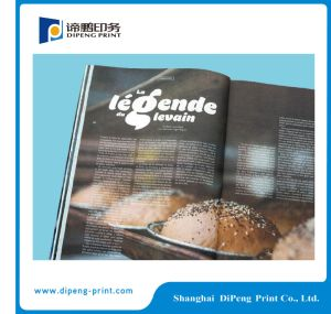 Industry Product Color Brochure Cataloguebook Printing pictures & photos