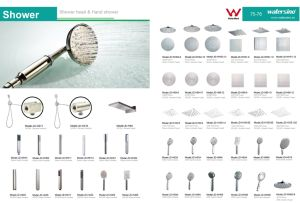 Stainless Steel 304 Rainfall Hand Shower Sanitary Wares pictures & photos