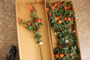 Artificial Plants and Flowers of Pomegranate Spray Gu0112164738 pictures & photos