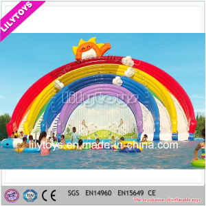 Lilytoys Commercial Inflatable Pool Slide for Sale