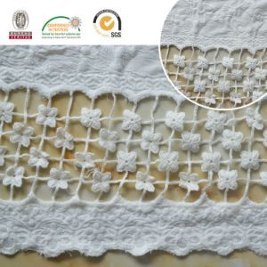 Mesh Lace Fabric, Swiss Embroidery Accessoriese30010 pictures & photos