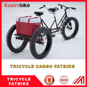 Recumbent Bike Recumbent Fatbike Trike Fat Bike Recumbent Fat Tire Bike pictures & photos
