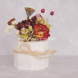 3D Designed Home Decorative Ceramic Aroma Diffuser (AM-144) pictures & photos
