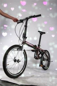 Leisure exercise Bike, Female City Folding Bikes pictures & photos