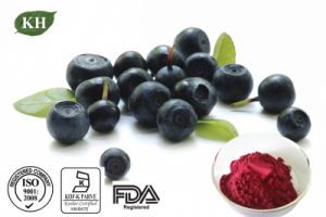 Weight Loss Acai Berry Extract pictures & photos