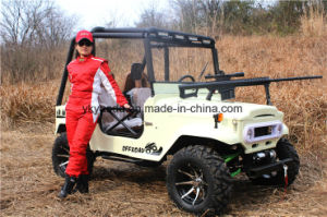 Ce 250cc ATV Electric ATV for Farm pictures & photos