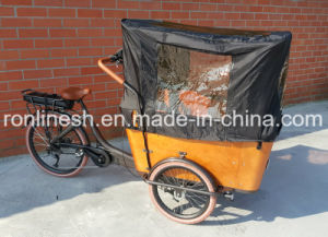 250W/500W Center Motor or MID Motor Electric Cargo Trike/Cargo E Bike/Family Cargo Tricycle/3 Wheel Cargo Bicycle/Cargo Fietsen Bench Seat 4 Kids, 7sp Nexus pictures & photos