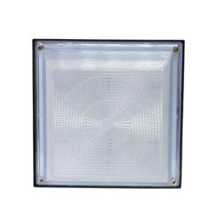 Outdoor LED Ceiling Light LED Canopy Light with High Quality SMD LEDs pictures & photos