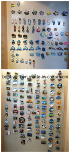 Original 3D Resin Fridge Magnet for Craft Gifts pictures & photos