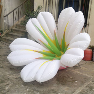 Inflatable Flower Decoration pictures & photos