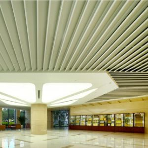 High Quality Artistic Design Metal Baffle Ceiling with Perforated pictures & photos