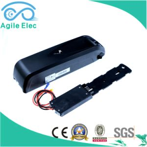 48V 14ah Hailong Panasonic Electric Bike Battery with Charger pictures & photos