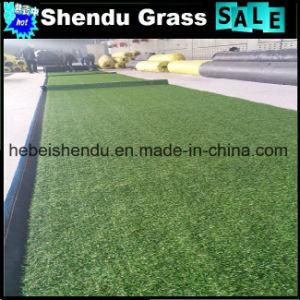 Indoor Artificial Grass Carpet 20mm for Door Mat pictures & photos