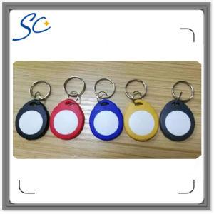 Access Control 125kHz T5577 RFID Keychain/RFID Key Tag/RFID Keyfob pictures & photos