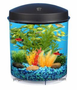 Newest Acrylic Fish Tank Aquarium for Sale pictures & photos