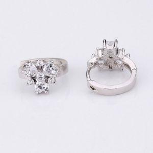 Wholesale Fashion Jewelry Brass Heart Cut Zirconia Huggie Hoop Earring pictures & photos