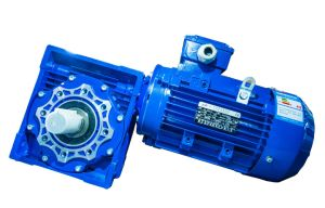 Nmrv Worm Gear Motor with Output Shaft Fcndk Worm Reducer pictures & photos