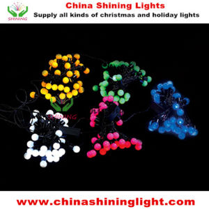 Wedding Party Christmas Holiday Brithday LED Decorative Light pictures & photos