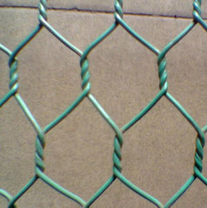 Chicken Wire Mesh, Galvanized Small Hole pictures & photos