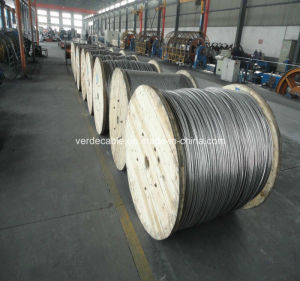 Overhead Transmission Line Aluminum Conductor AAC pictures & photos