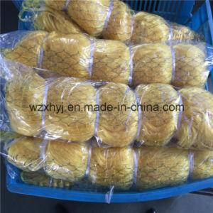 0.21mm*22mmsq*16md*100m Nylon Monofilament Fishing Net pictures & photos