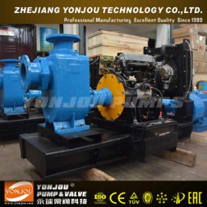 Zw Diesel Engine Horizontal Centrifugal Sewage Pump pictures & photos