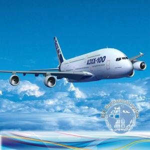 Logistics Service Air Shipment Philippines, Qatar, Saudi Arabia, Sikkim pictures & photos
