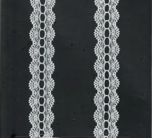 Top Quality Factory Price Elastic Lace (with oeko-tex certification ZZ2908) pictures & photos