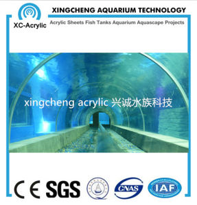 Oceanarium Project Acrylic Tunnel Aquarium pictures & photos