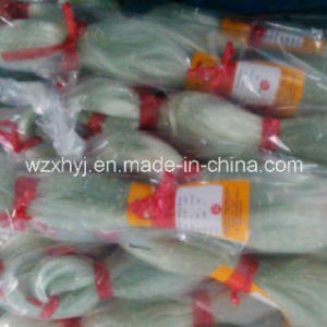 Clear High Quality Nylon Fishing Net (NO. 4) pictures & photos